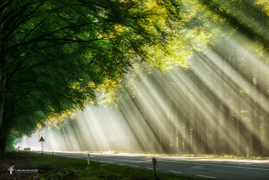 Curtain of Light by Lars van de Goor on 500px.com