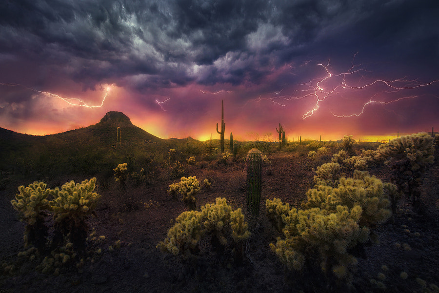 Desert Fireworks by Marc  Adamus on 500px.com