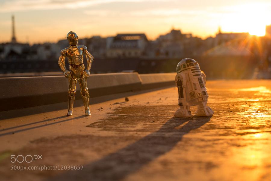 Photograph See-Threepio et R2D2 profitent des derniers rayons du soleil by Arnaud Brecht on 500px