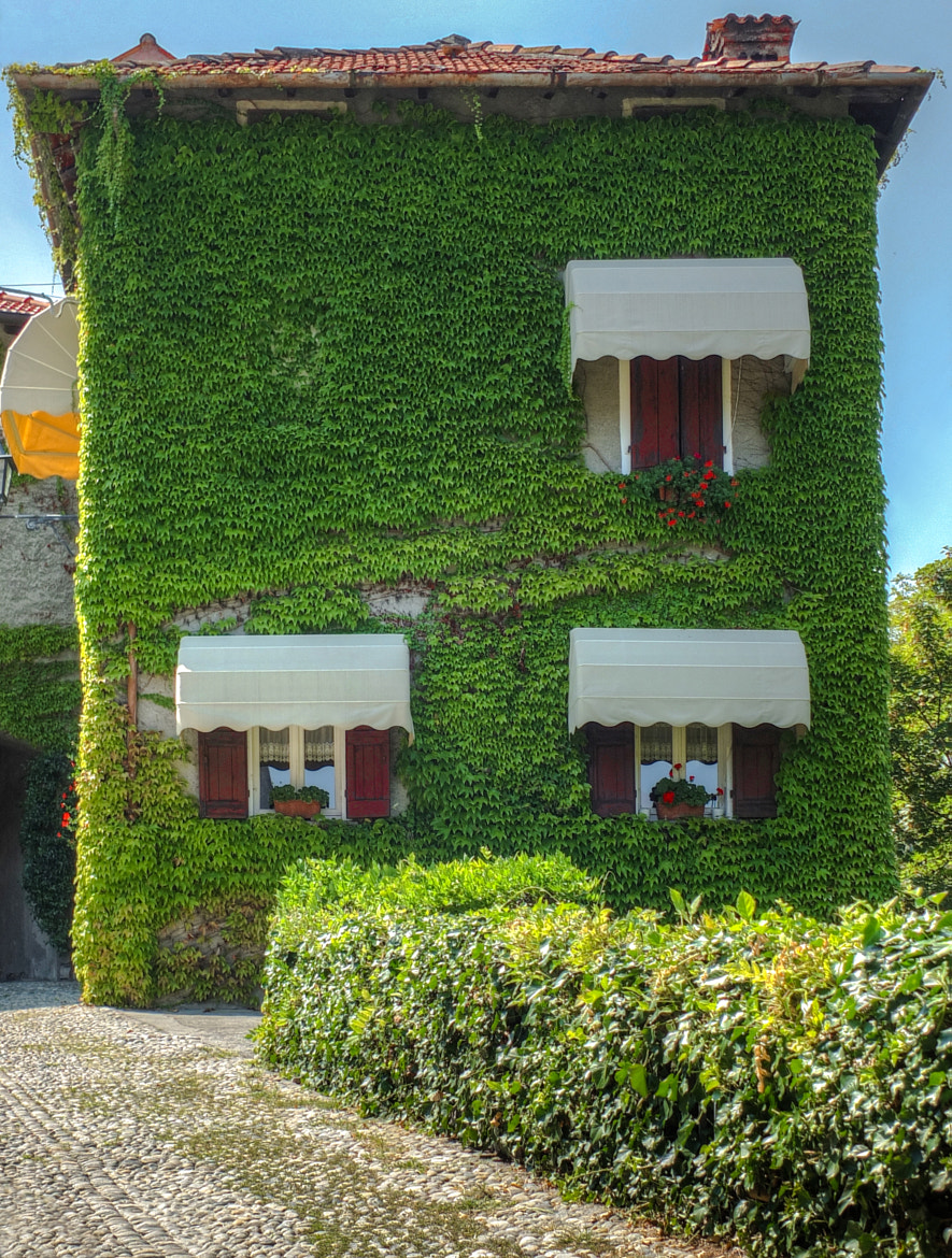 Photograph The green home by Giovanni Sottile on 500px