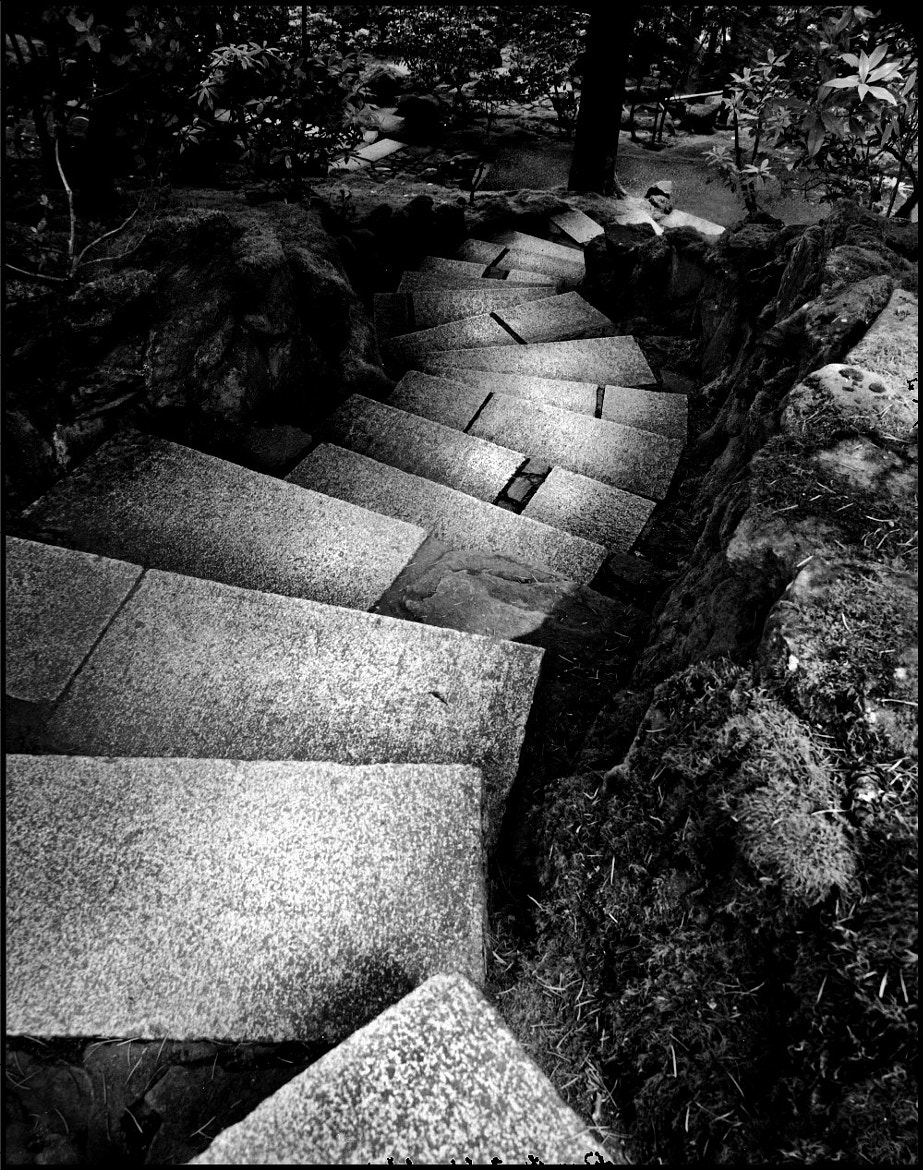 Photograph 17 stairs from ignorance by Troy Zdzieblowski on 500px