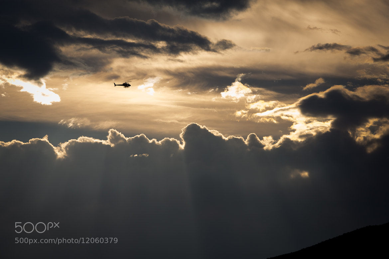 Photograph Evening Flight by Morten  Byskov on 500px