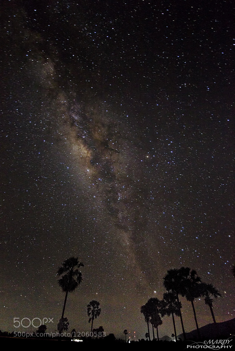 Photograph Milky Way with Cambodia Palm Tree! by Mardy Suong Photography on 500px