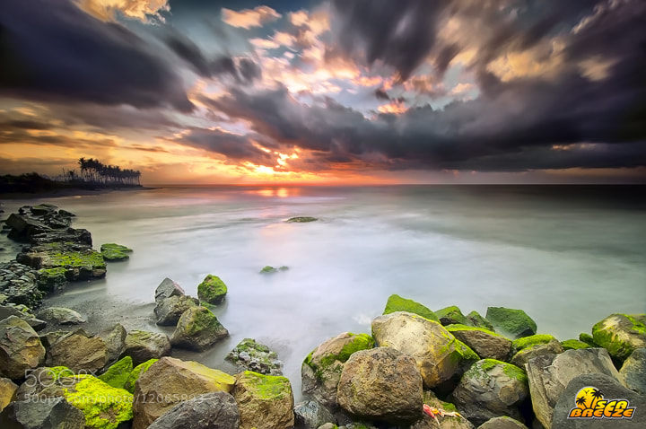 Photograph wake up by Tut Bolank on 500px