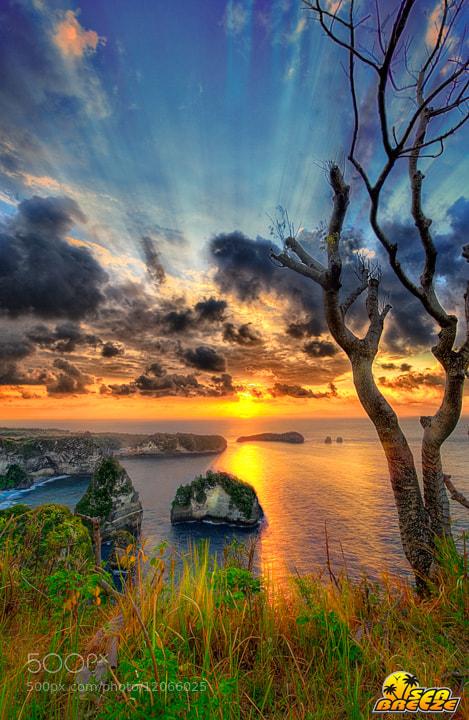 Photograph nusa penida island by Tut Bolank on 500px