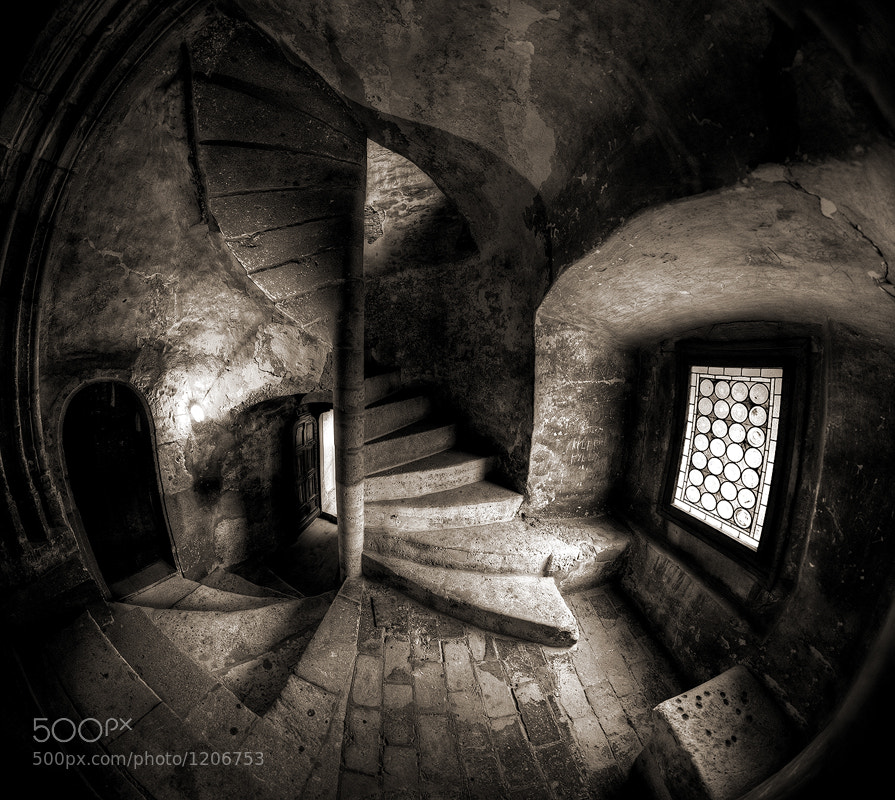 Photograph Twisted by Mogan Andrei on 500px