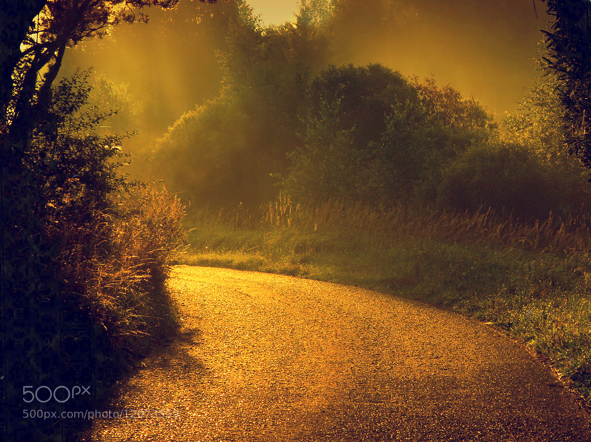 Photograph Let's go together by **  REgiNA  **  on 500px