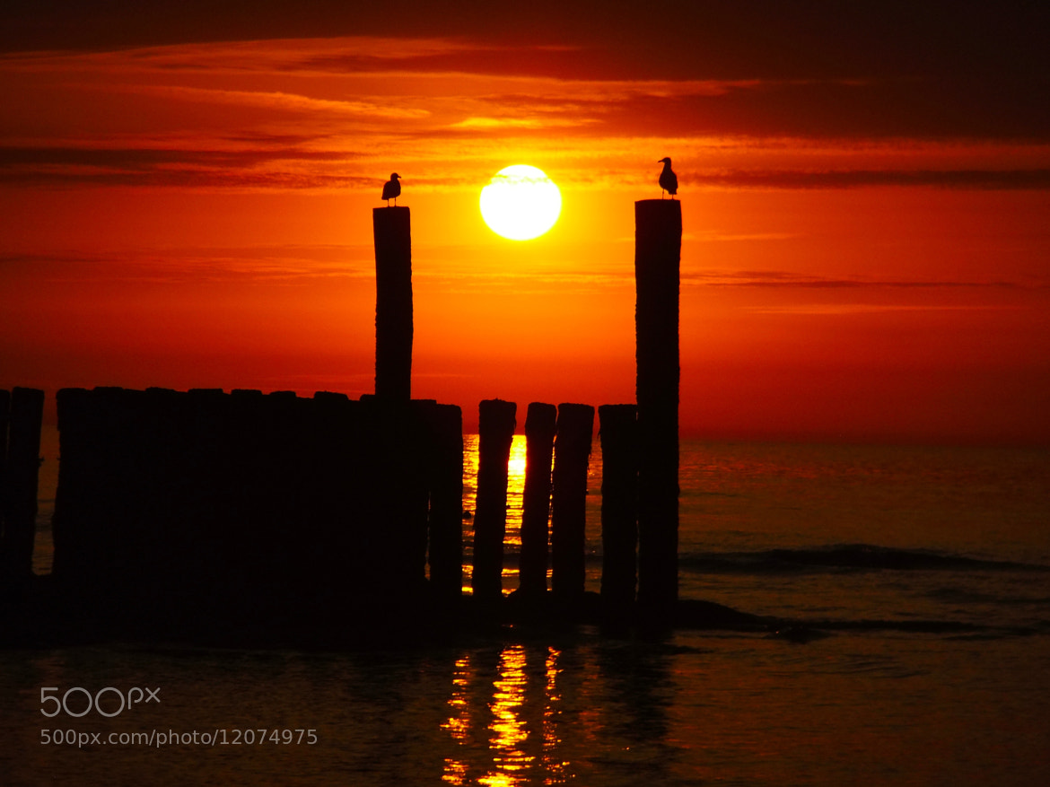 Photograph Sunset/Oranjezon by Ann Vdb on 500px