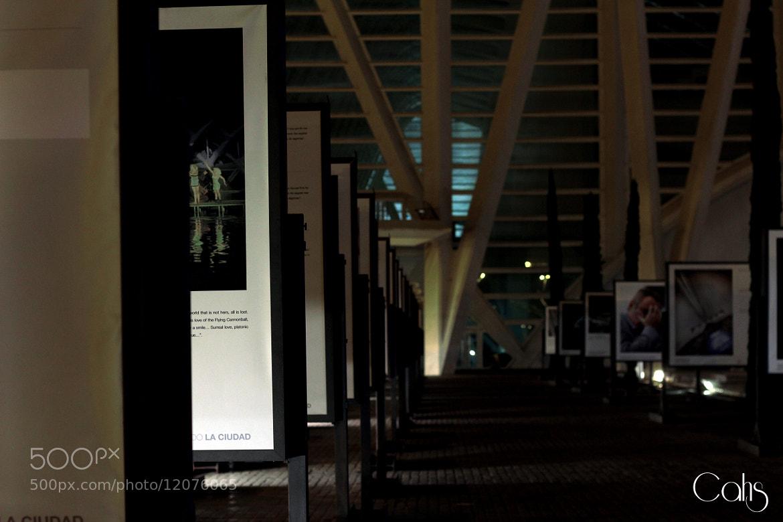 Photograph ciudad artes y ciencias by Pau Lopez Tamarit on 500px