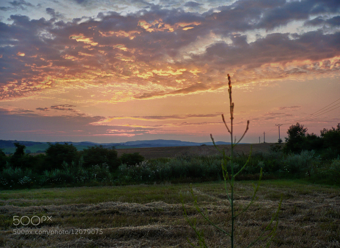 Photograph late summer by Dominik Astrodi on 500px
