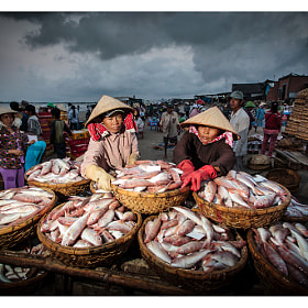 Fresh fish for market by Peter Pham (PeterPham)) on 500px.com