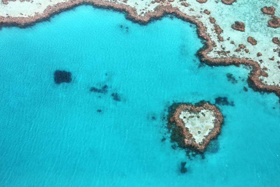 Heart Reef Australia by Stephanie Schulze on 500px.com
