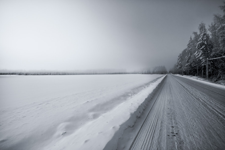 Photograph The Road by Jari Knuutila on 500px