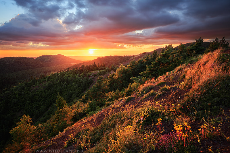 Photograph Beyond Forests and Volcanoes by Maxime Courty on 500px