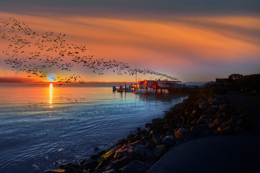 Sunrise at Sausalito by Like_He on 500px.com