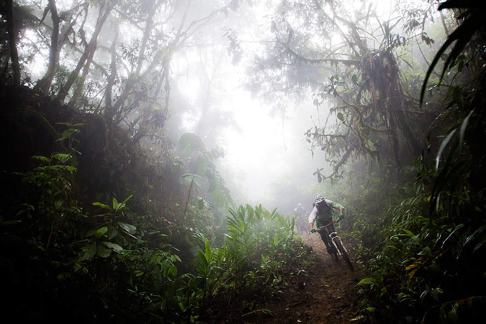 Photograph Rainforest Riding by Dan Barham on 500px