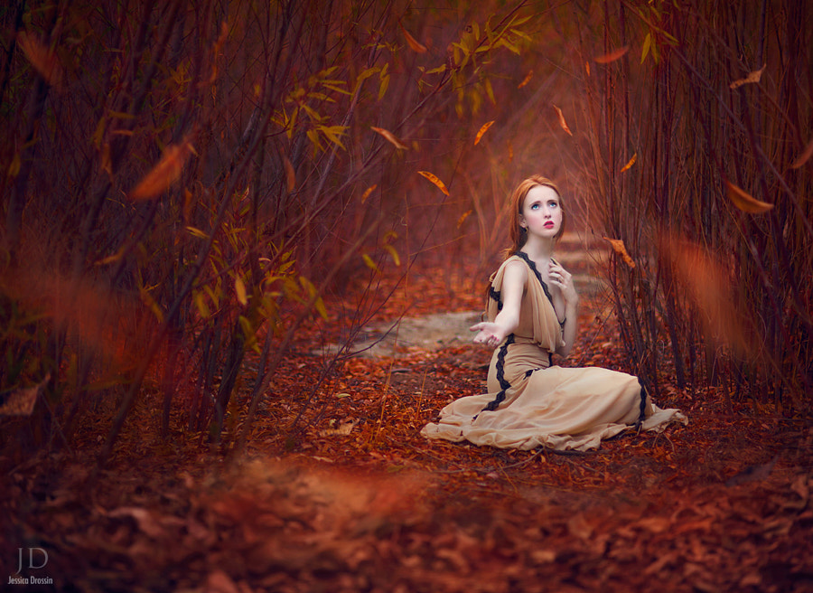 Waiting for Fall by Jessica Drossin on 500px.com