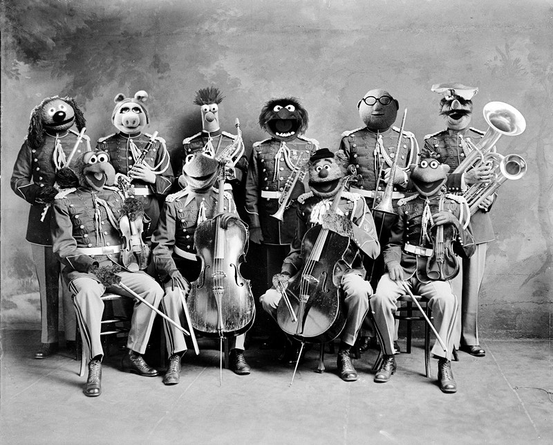 Photograph The Muppet Orchestra by Daniel Polevoy on 500px