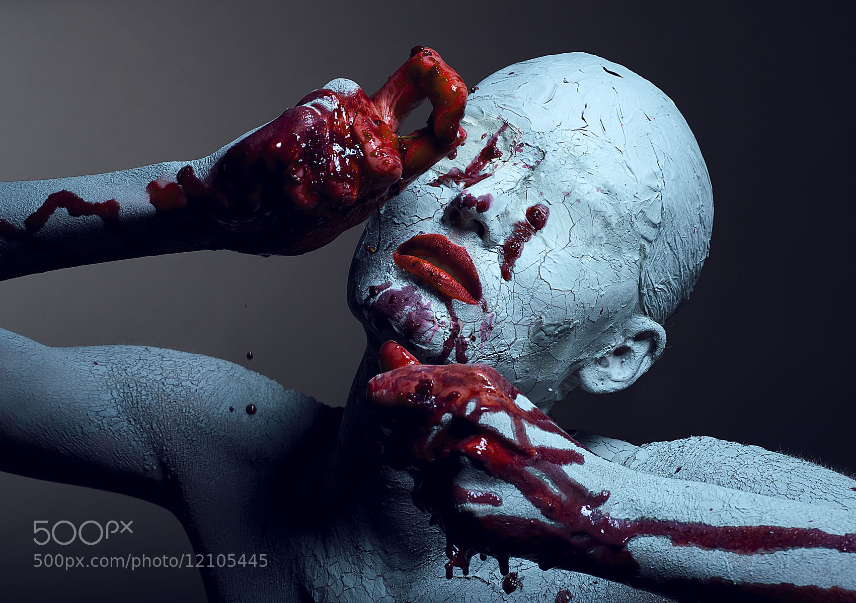 Photograph Untitled by Коногорова Евгения on 500px