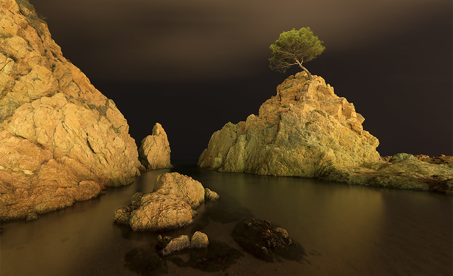 Photograph Life created on a rock by KYRIAKOS STAVROU on 500px