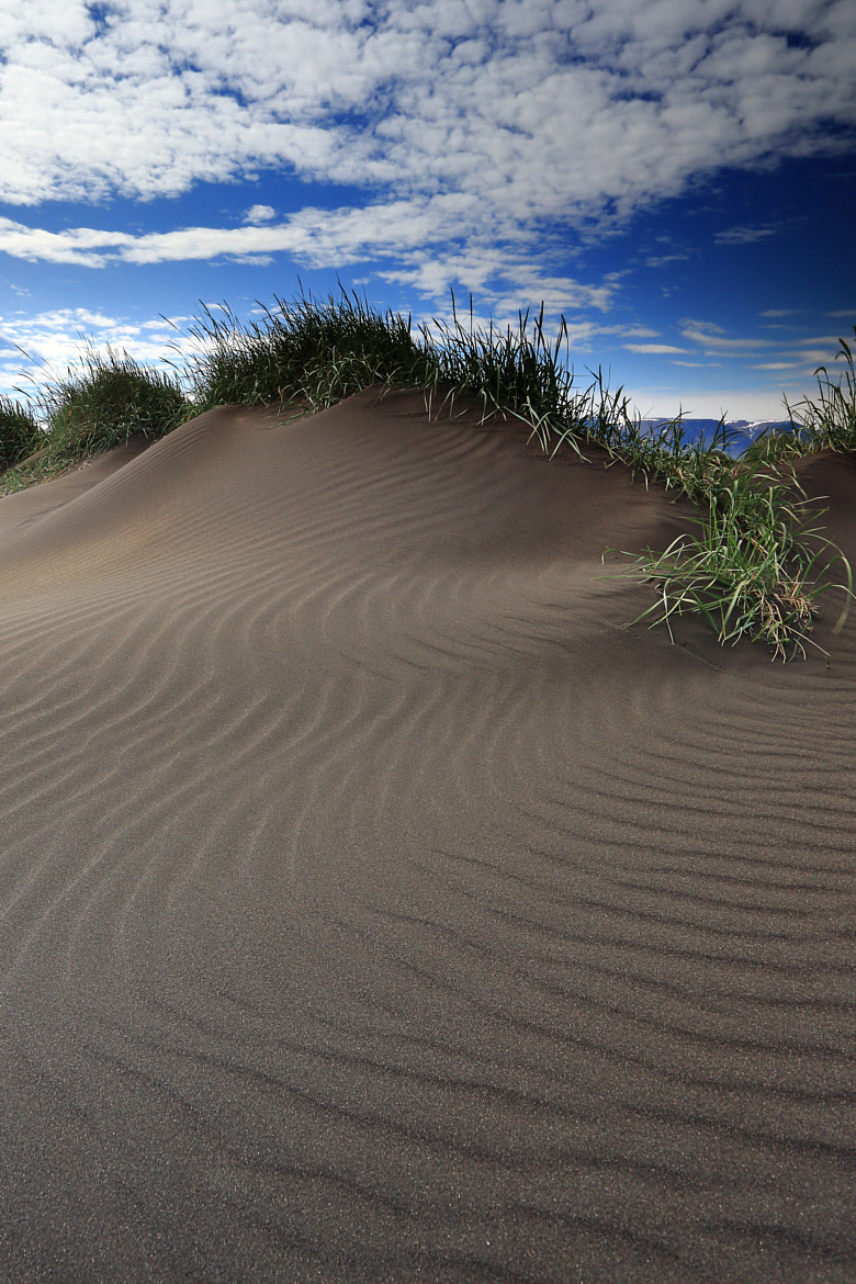 Photograph The Wind and the Sand by Jon Hilmarsson on 500px