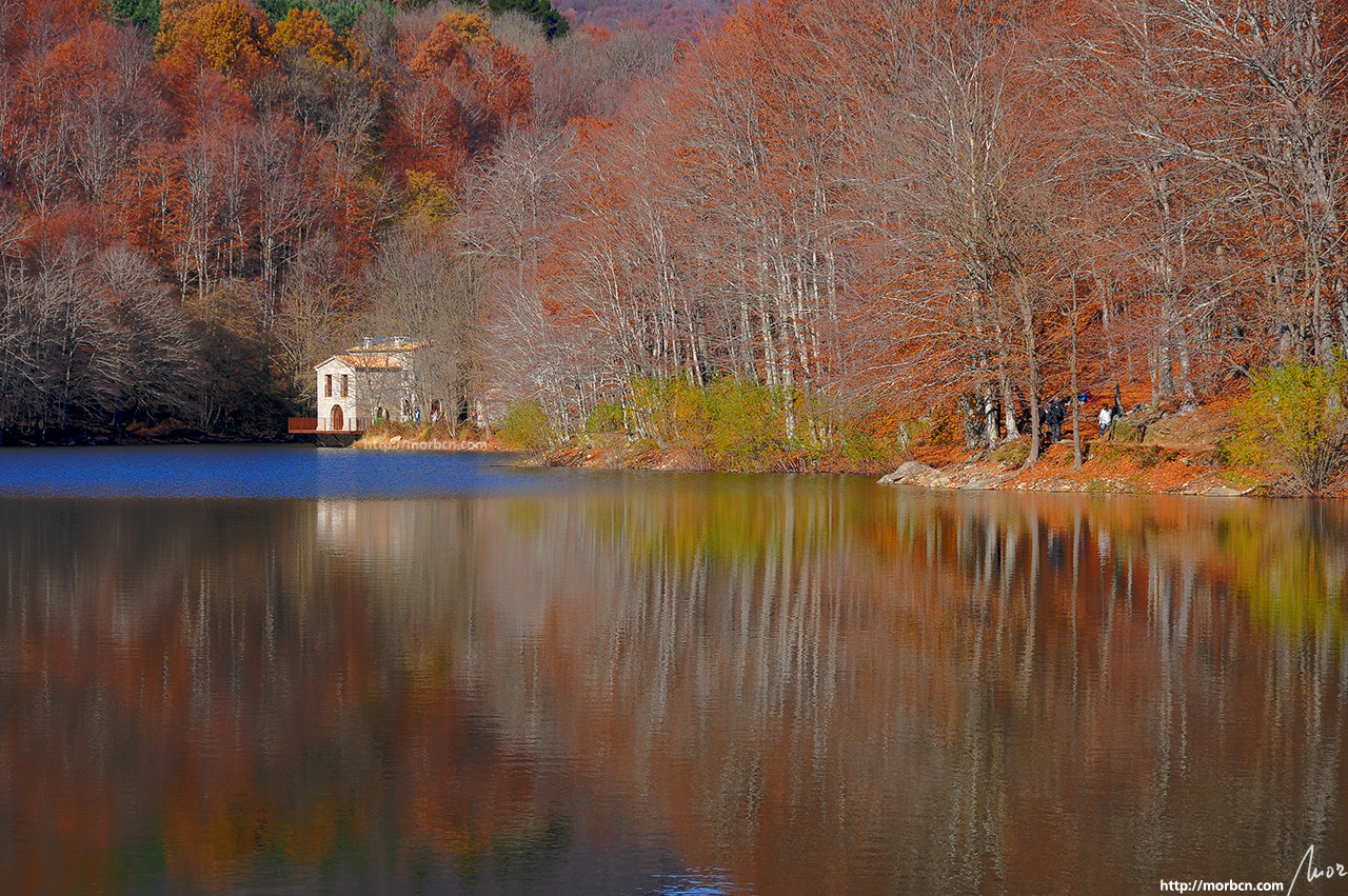 Photograph Autumn by mor BCN on 500px