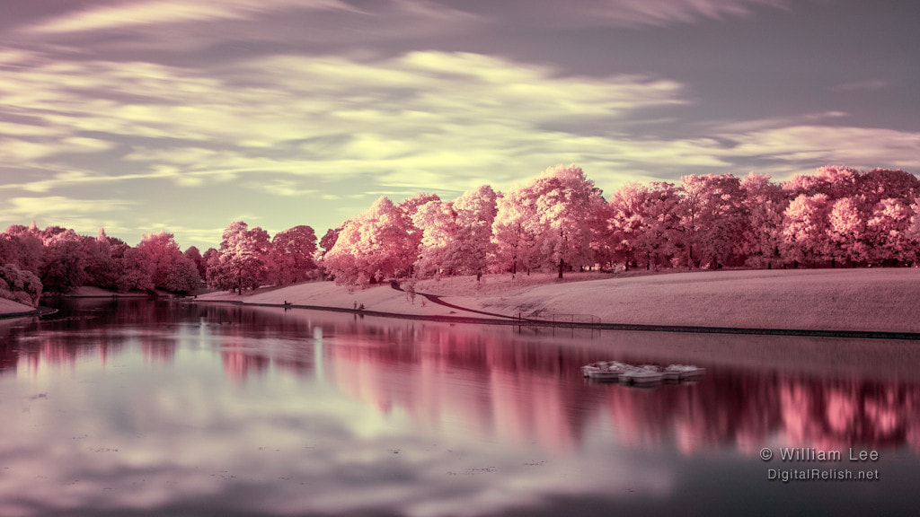 Photograph Sefton Park Lake by Will Lee on 500px