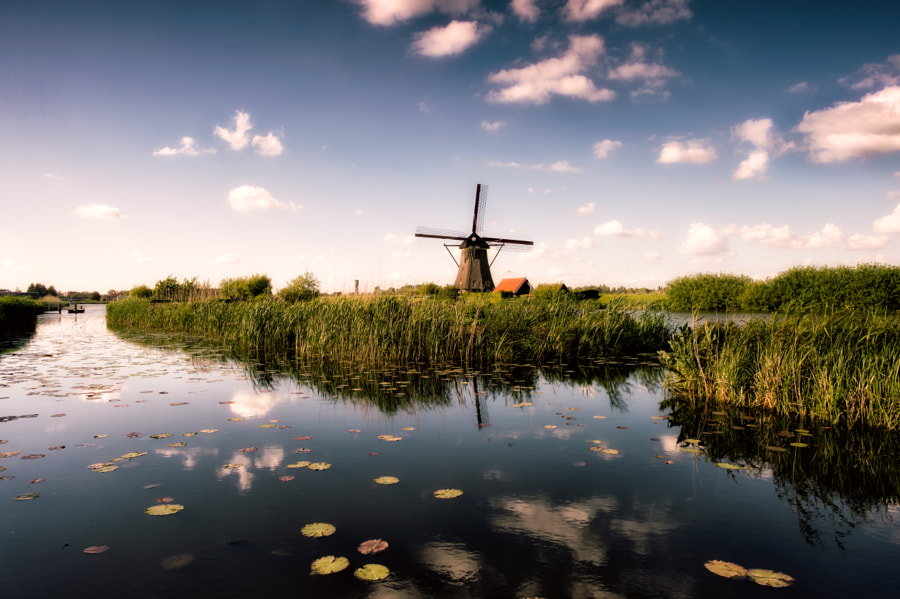 Photograph The bright side of Kinderdijk by Franz Engels on 500px