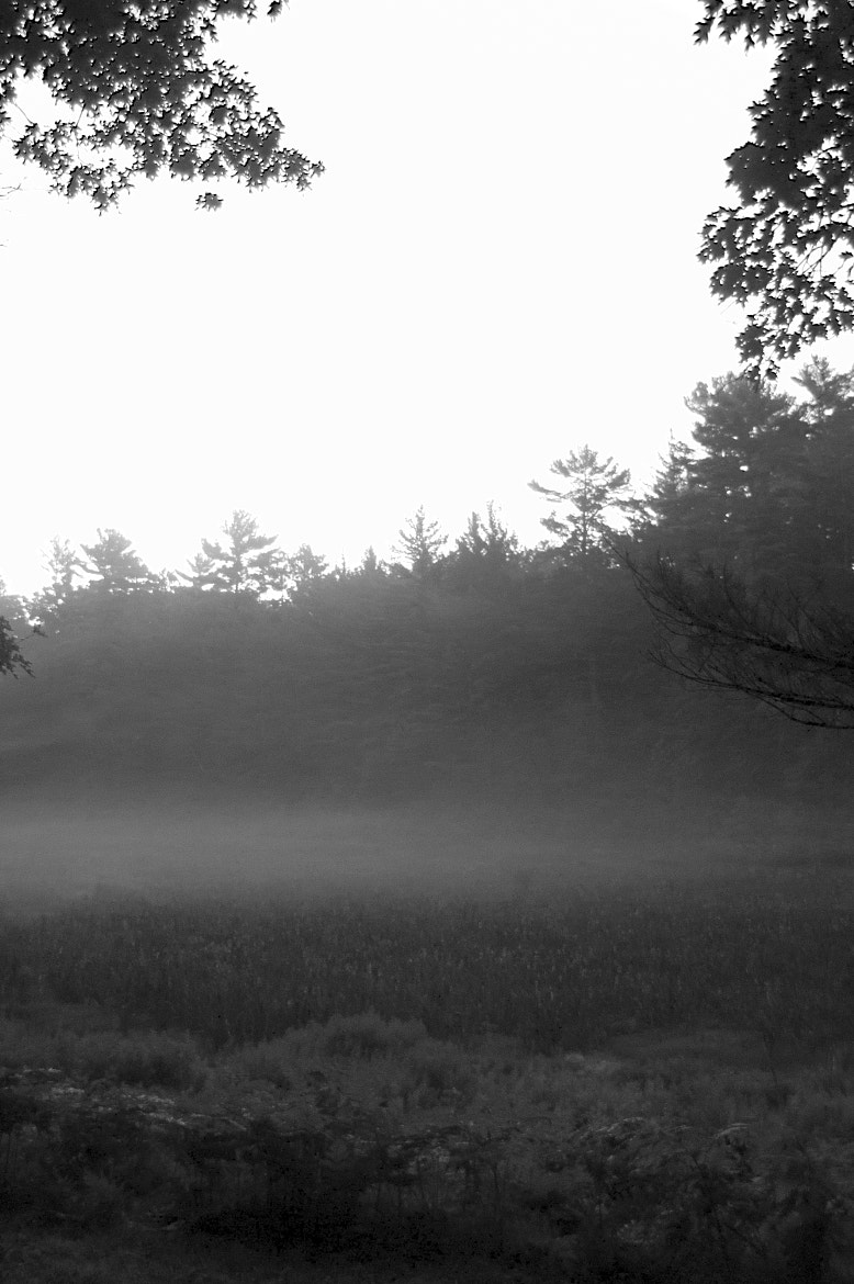 Photograph Morning Fog by Aaron Boothe on 500px