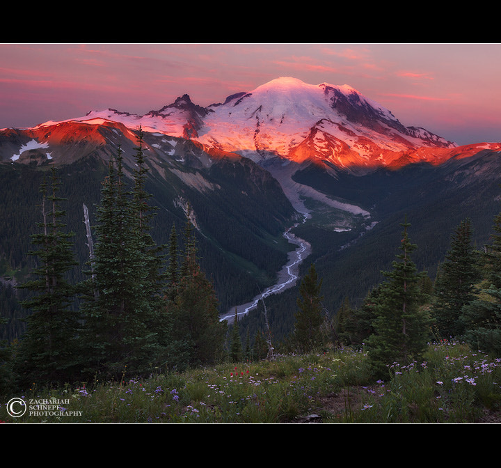 Photograph King of the Cascades by Zack Schnepf on 500px
