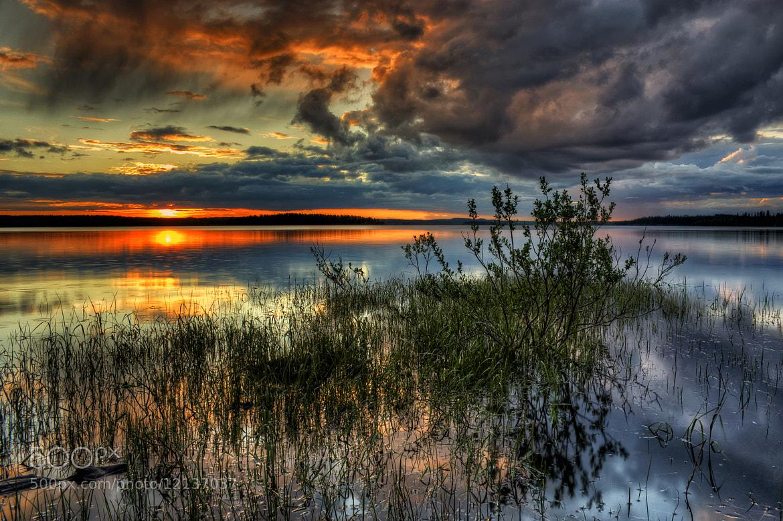 Photograph Water to Grow by Juha Härkönen on 500px