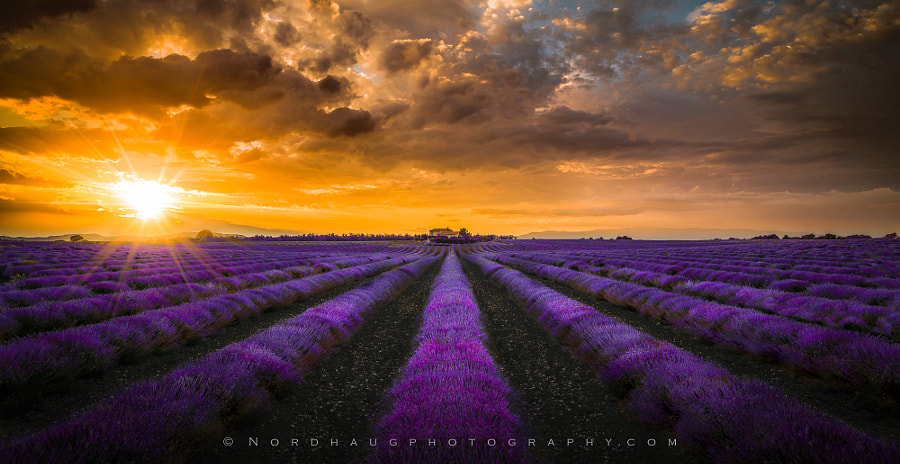 Dream of Provence by Dag Ole Nordhaug on 500px.com