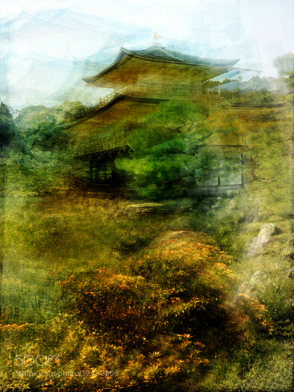 Photograph 金閣寺 Kinkaku-ji by brut carniollus on 500px