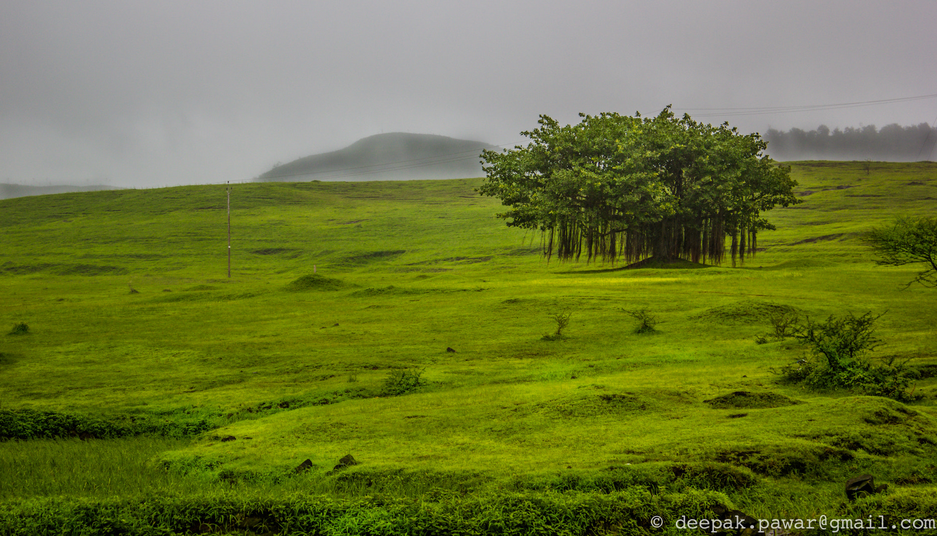 Photograph Isolated, yet so integral to the mother nature by Deepak Pawar on 500px