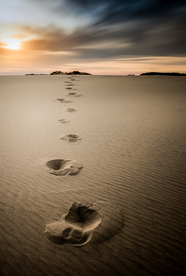 WALK OF LIFE by Christian Wig on 500px.com