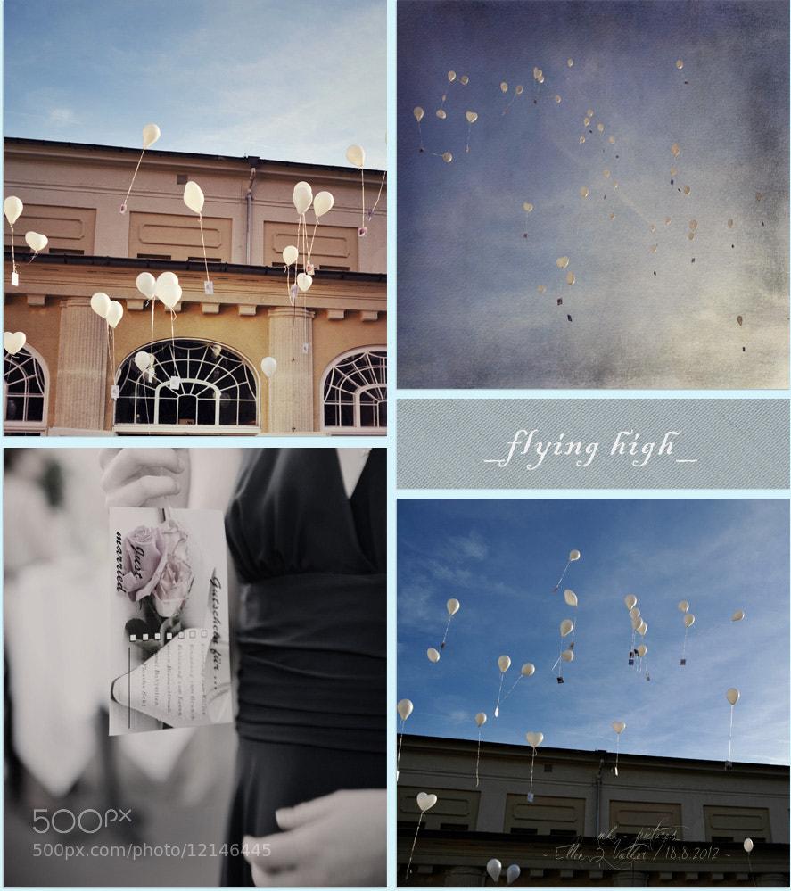 Photograph ~ flying high ~ by sunoir-photo.de  on 500px
