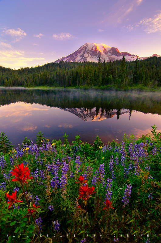 Photograph Rainier Promise by Nagesh Mahadev on 500px