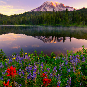 Rainier Promise by Nagesh Mahadev (nageshm)) on 500px.com