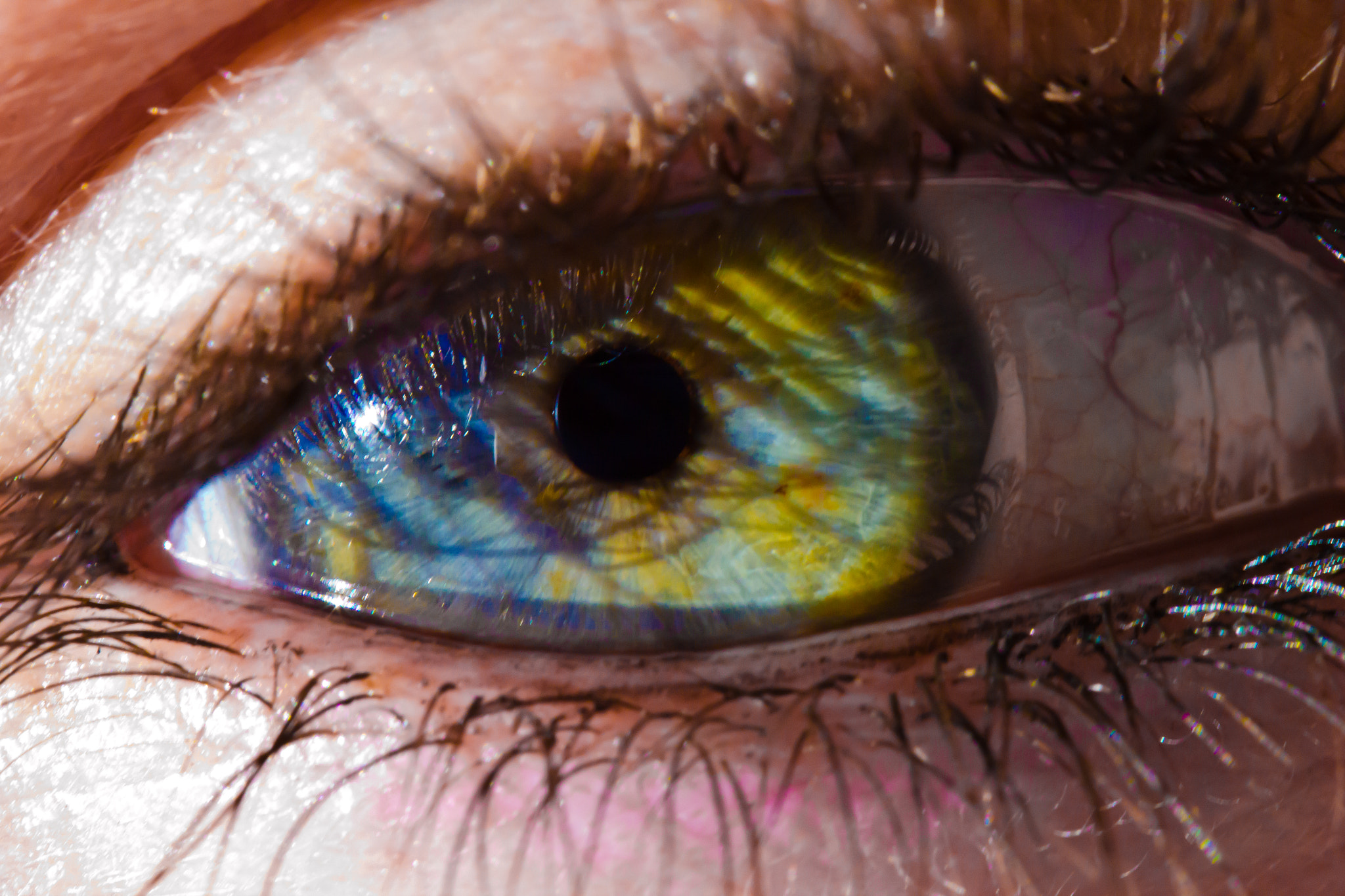 Photograph Eye by William Arnold on 500px
