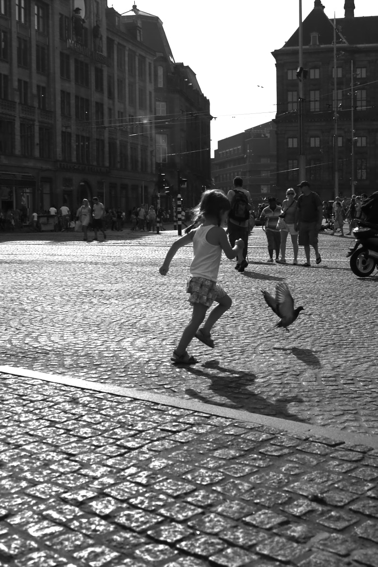 Photograph Chasing Pigeons by Anne-Fleur Koolstra on 500px