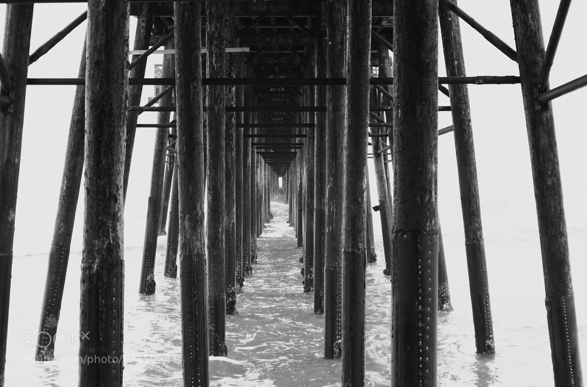 Photograph Under the Pier by Philippe Coursodon on 500px