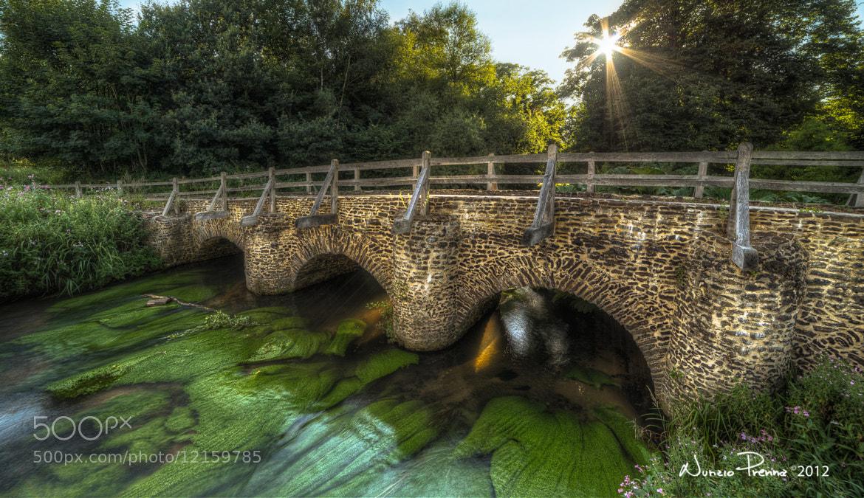Photograph Green below by Nunzio Prenna on 500px