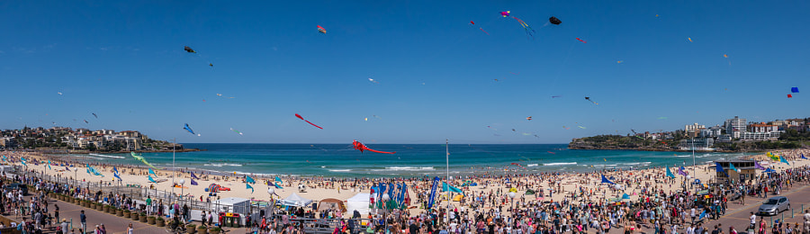 Photograph Festival of the Winds, Bondi Beach Australia by Travis Chau on 500px