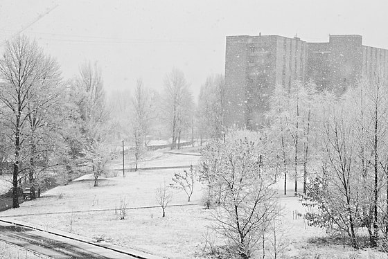 Photograph my winter by Alisha Dystopia on 500px