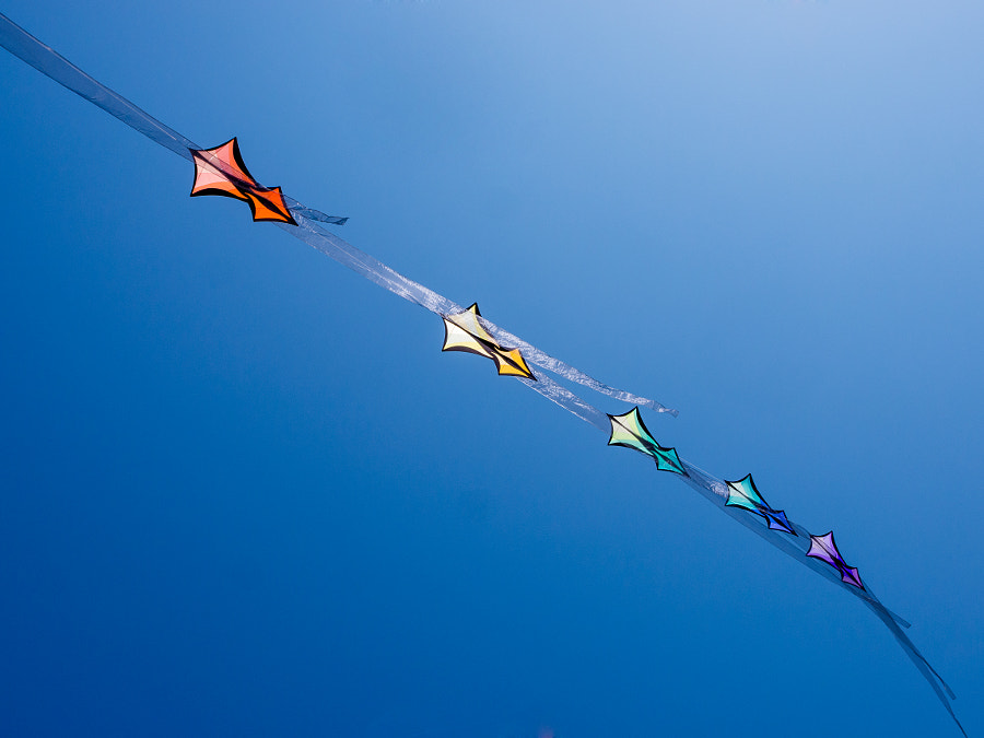 Photograph Diagonal Kites, Bondi Beach Festival of the Winds by Travis Chau on 500px