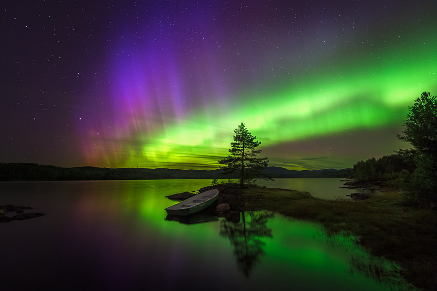 Photograph Alien Invasion by Ole Henrik Skjelstad on 500px