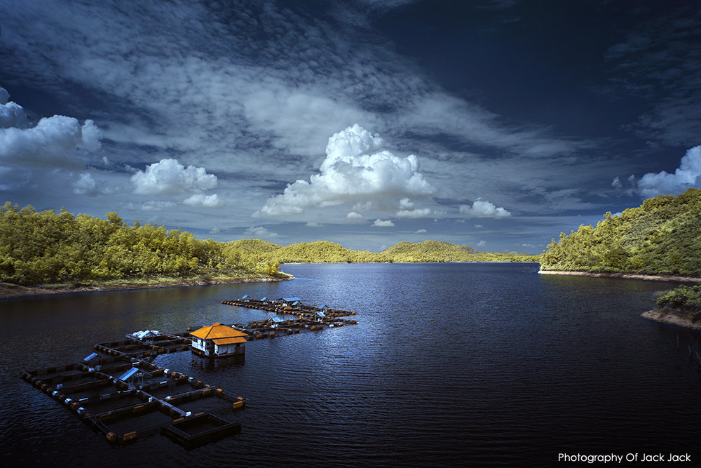 Photograph 'AMAZING VIEW FROM INDONESIA' by HENDRIK PRIYANTO on 500px
