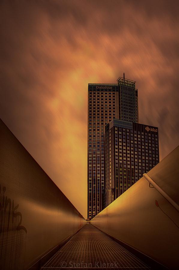 Golden Rotterdam