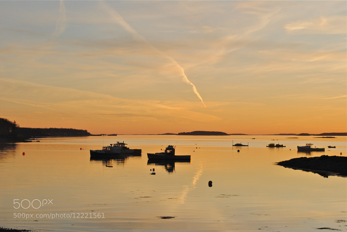 Photograph Maine Coast by Victoria Clemons on 500px