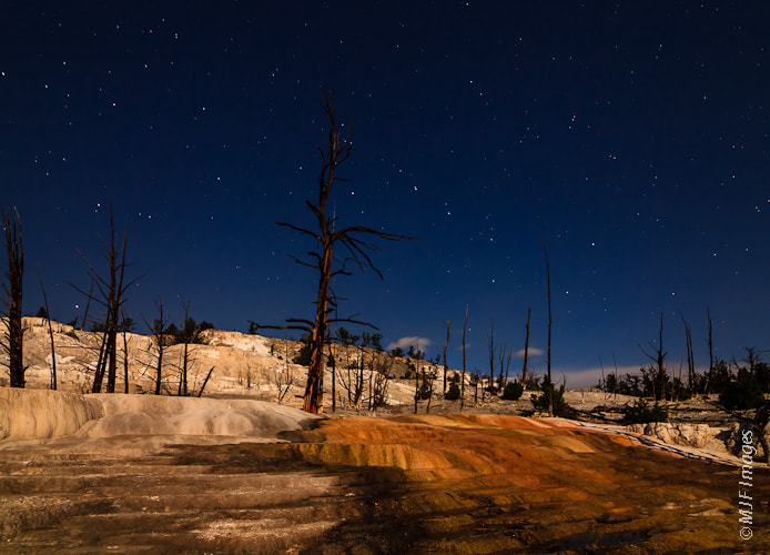 Photograph Mammoth under the Stars by Michael Flaherty on 500px